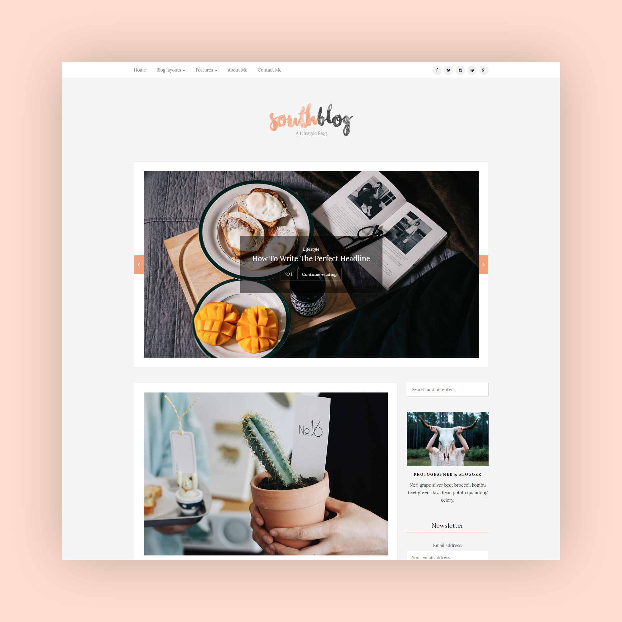 SouthBlog - Minimal and Modern Blog WordPress Theme