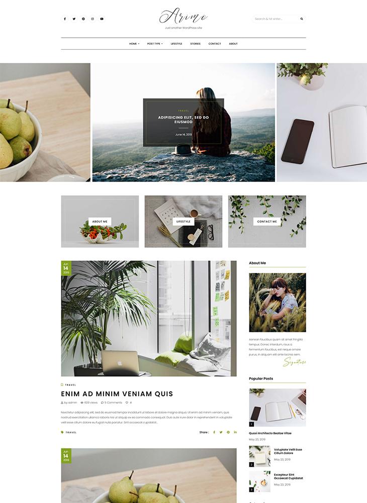 Arimo-Minimal-&-Modern-Blog-WordPress-Theme-Standard